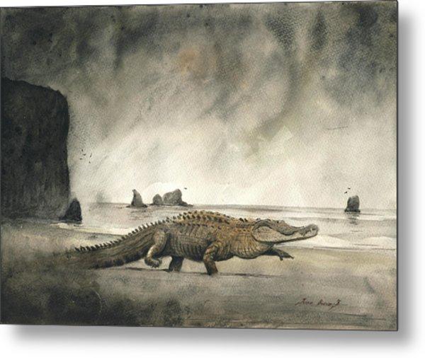 Saltwater Crocodile Metal Print