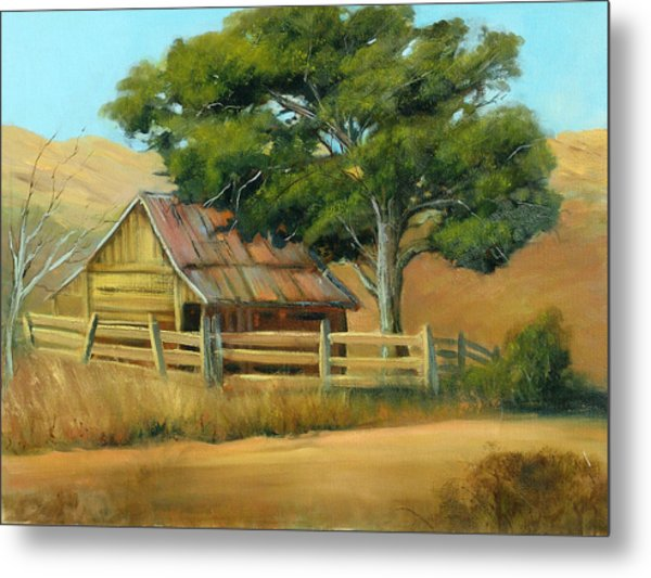 San Joaquin Barn Metal Print by Sally Seago