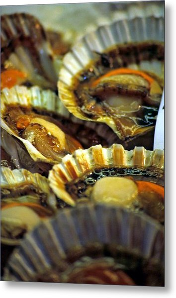 Scallops At Rialto Market In Venice Metal Print by Michael Henderson