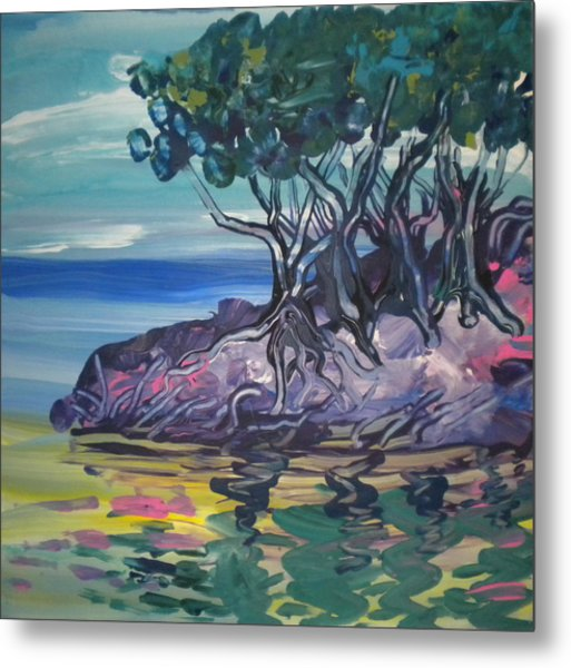 Sea Grapes By Lois Metal Print by Art Without Boundaries