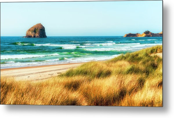 Sea-grass Dunes Metal Print