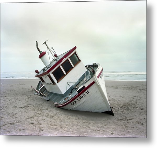 Sea Lion II - Last Day On The Beach Metal Print by HW Kateley
