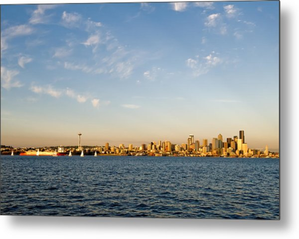 Seattle Landscape Metal Print by Tom Dowd