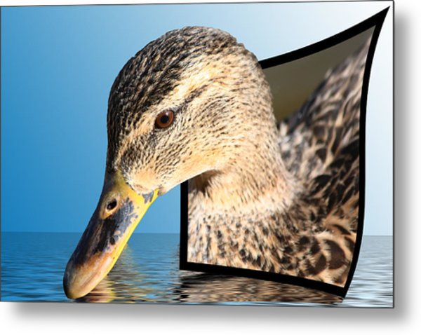 Seeking Water Metal Print
