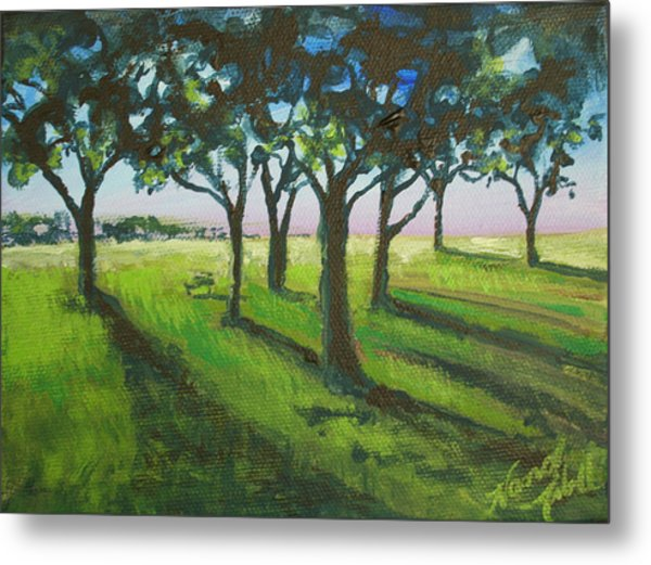 Seven Trees Metal Print by Michele Hollister - for Nancy Asbell