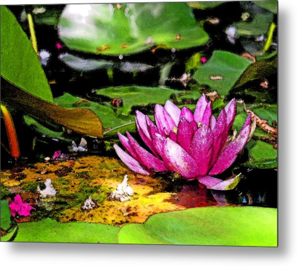 Shaded Lotus Wearing Water Color Photograph By James Granberry