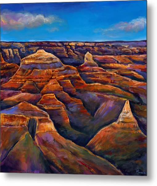 Shadow Canyon Metal Print