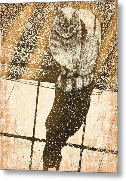 Shadow Cat Metal Print