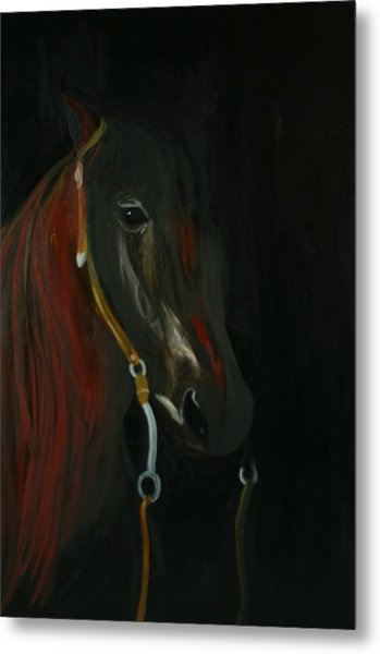 Shadow Metal Print by Karen Rester