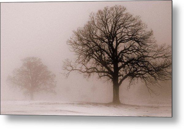 Shadows In The Fog Metal Print