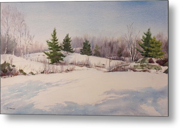 Shadows On Snow In The Canadian Shield  Metal Print by Debbie Homewood