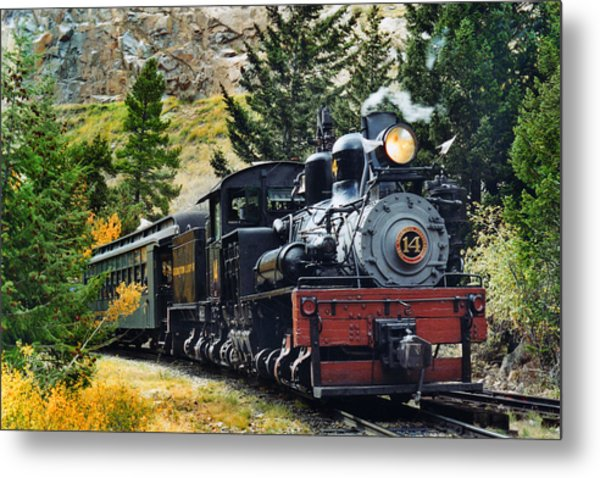 Shay On The Georgetown Loop Metal Print