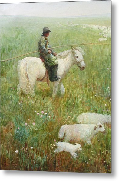 Sheepherder Metal Print