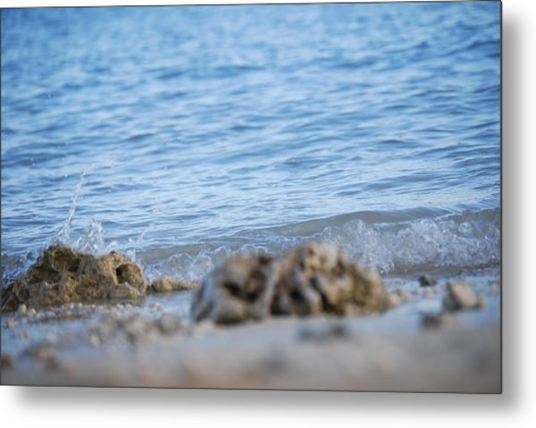 Shore View Metal Print by Lakida Mcnair