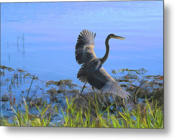 Shore Walk  Metal Print