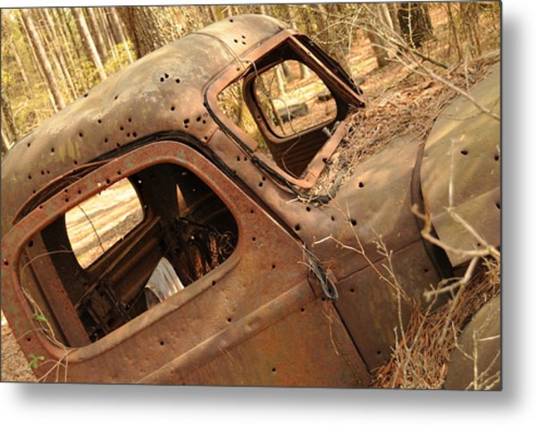 Shot To Rot Metal Print by Maureen Norcross