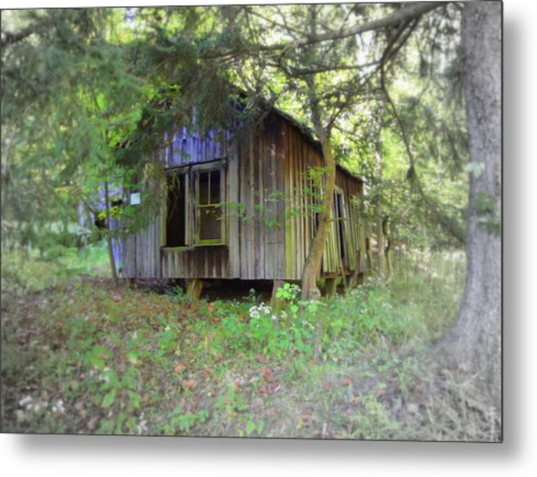 Silent By The Side Of The Road Metal Print by Terry  Wiley