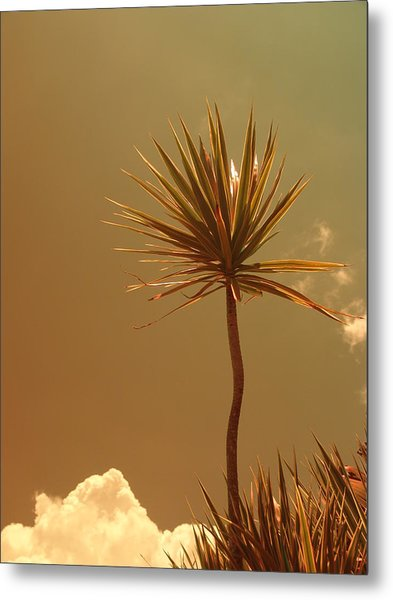 Skyward Bound Metal Print by Florene Welebny