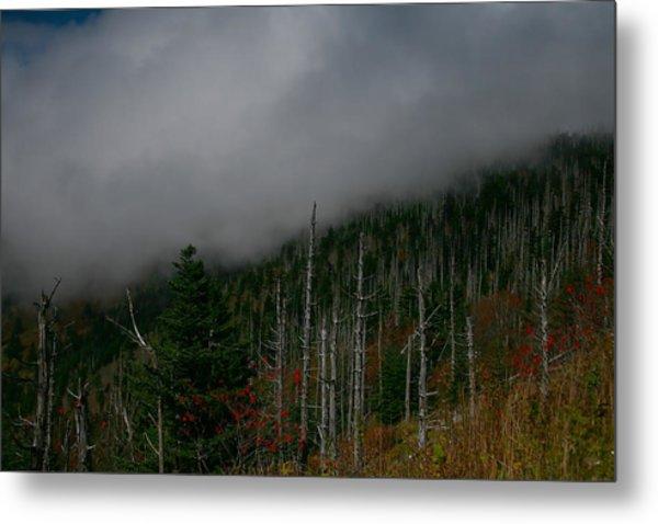 Smokey Mountains Metal Print by James Jones