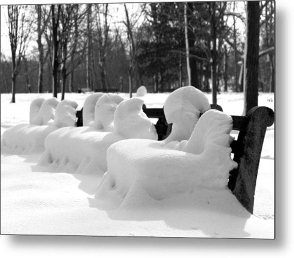 Snow Cushions Metal Print by Freda Sbordoni