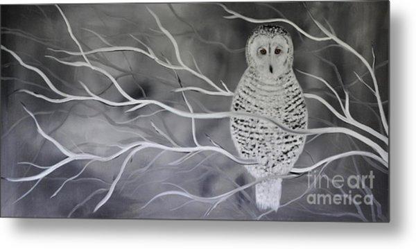Snowy Owl Metal Print