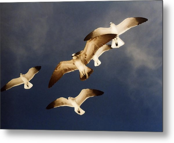 Soar Metal Print by Ginger Howland