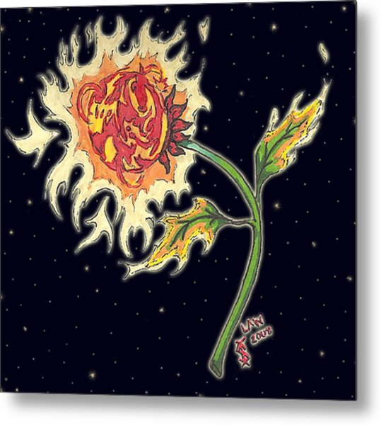 Solar Sun Flower Metal Print by Law Stinson