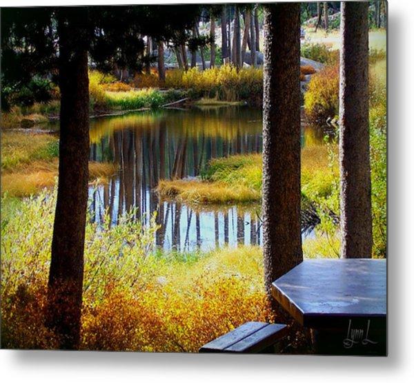 Solitude At Donner Pass Metal Print by S Lynn Lehman