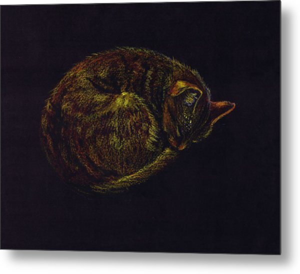 Sound Asleep II Metal Print by Mui-Joo Wee