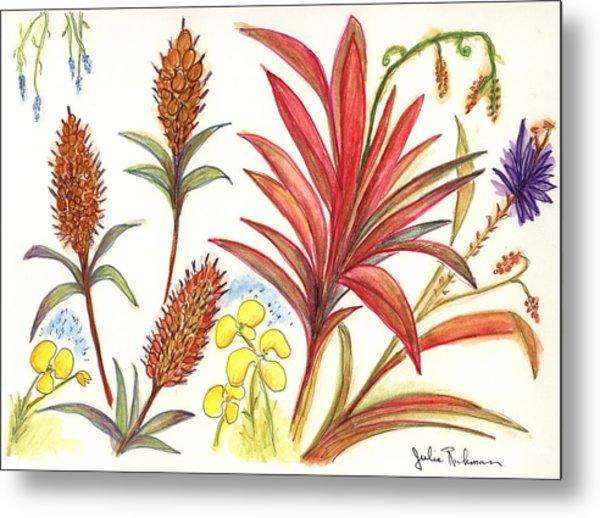 Spiky Florida Flowers Metal Print by Julie Richman