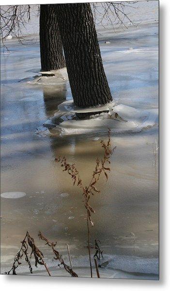 Spring Flood Metal Print
