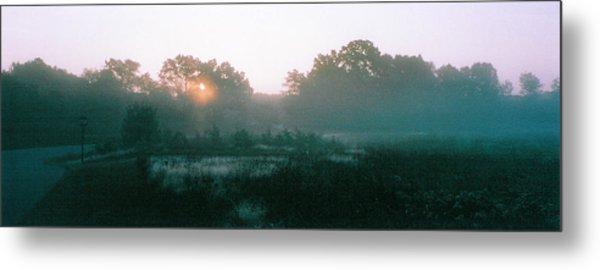 Still Mist Metal Print by Tom Hefko