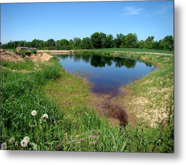 Still Pond Reflections Metal Print by Todd Zabel