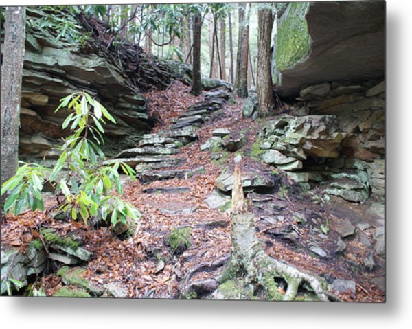 Stone Path Metal Print by Heather Green