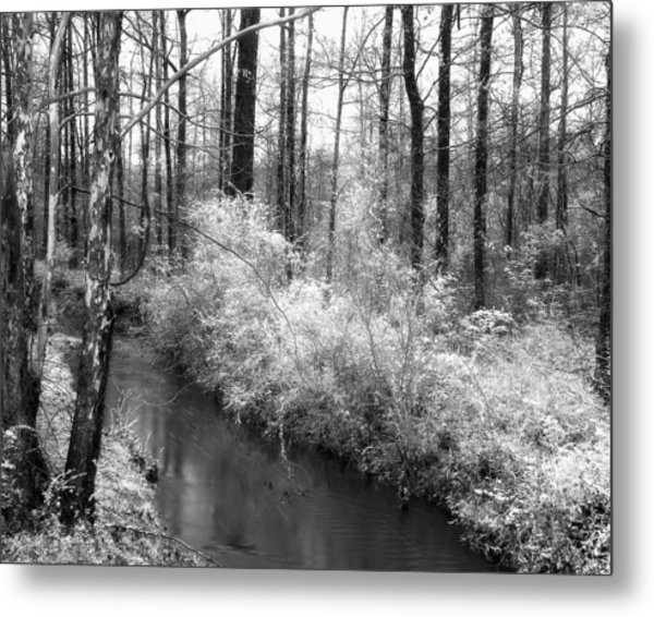 Stream In The Woods Metal Print