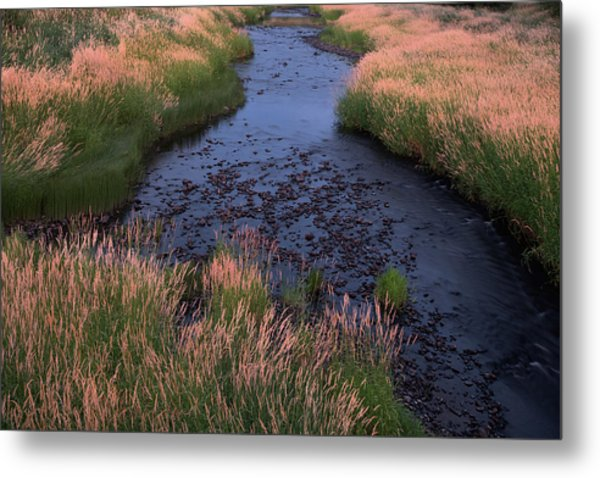 Summer Evening On Palouse River Metal Print by Jerry McCollum