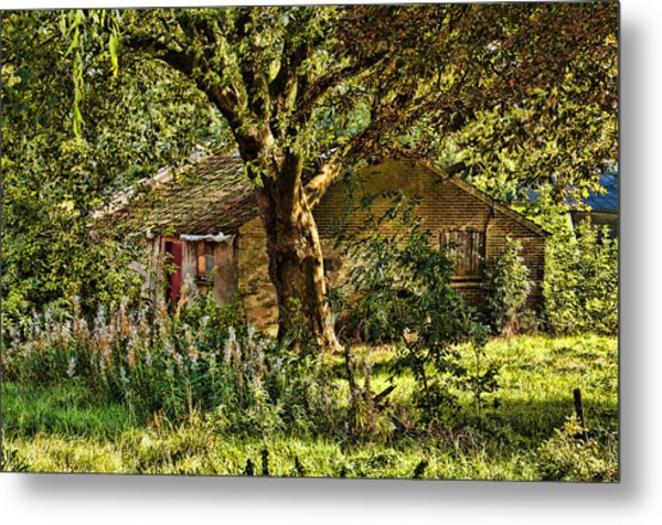 Summer In Holland-2 Metal Print
