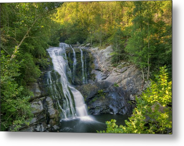Summer In Water And Green Metal Print by Darrell Young