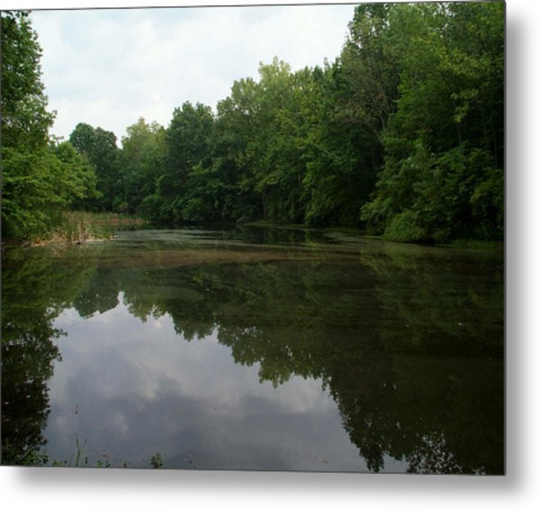 Summer Pond Metal Print
