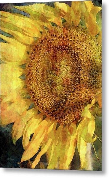 Sunflower 2254 Idp_2 Metal Print