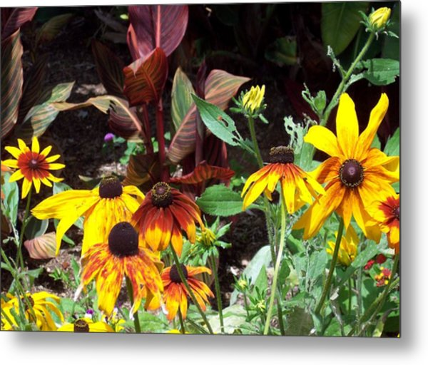 Sunflowerland Metal Print by Jean Booth