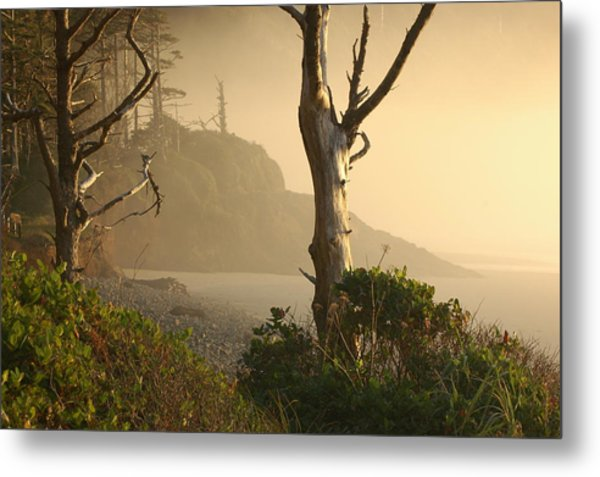 Sunrise Haze Metal Print by Lori Mellen-Pagliaro