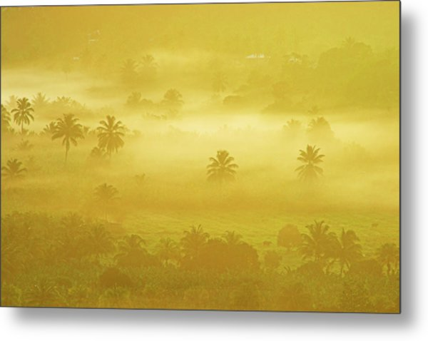 Sunrise On Mist In Roseau Valley- St Lucia Metal Print by Chester Williams
