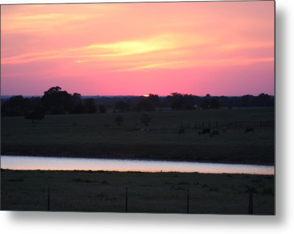Sunset With Pond Metal Print by Jonathan Kotinek