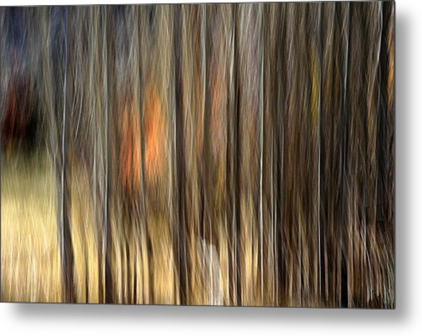 Support Metal Print by Robert Shahbazi