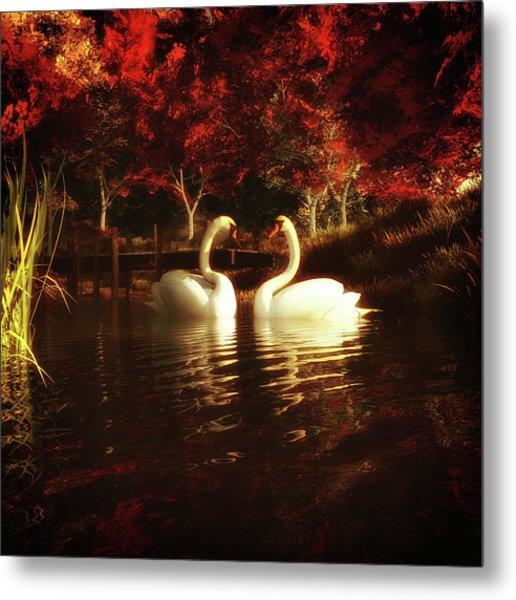 Swans In A Pond Metal Print