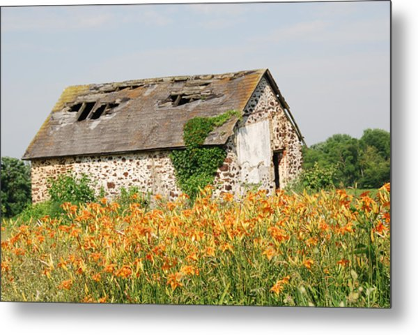 Swede Run Barn  Metal Print