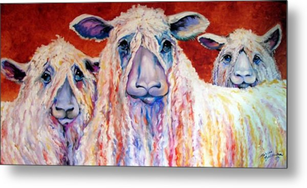 Sweet Wensleydales Sheep By M Baldwin Metal Print by Marcia Baldwin