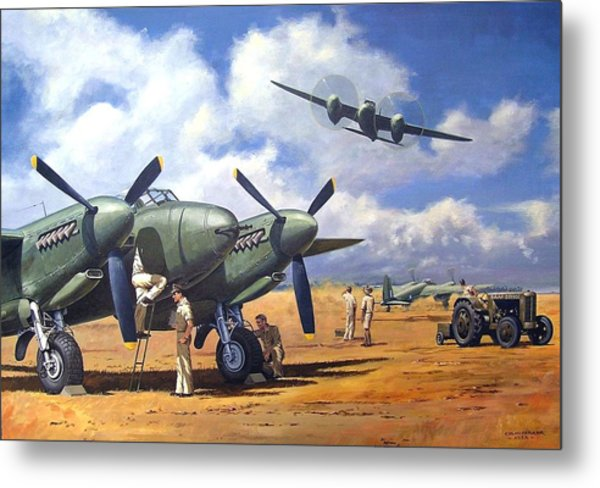 'taking Delivery - Mosquito' Metal Print