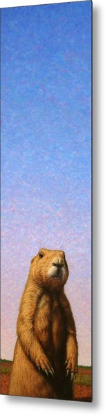 Tall Prairie Dog Metal Print